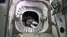 beam-astronaut C'est ce qui a eu lieu hier, l'astronaute Jeff Williams est devenu la première personne à rentrer à bord d'un habitat gonflable installé sur la Station spatiale internationale.