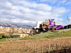 Marques de Riscal - Rioja wineries Tours