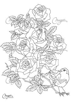 Masjas Roses Coloring Page made by Masja van den Berg - featuring 1 hand-drawn design for you to bring to life with color! Do you love flowers?