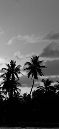 #DVFlovesROXY Hawaii