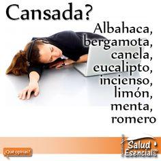 Aceites Esenciales para cansados Te sientes cansada? Muchos aceites esenciales son conocidos para ayudar a despertarte y sentirte alerta sólo por el aroma. La sensación de cansancio puede ser una causa física, como un exceso de ejercicio, la hipoglucemia, la mala alimentación, la obesidad y la hipertensión. Otras causas de baja energía pueden ser causas emocionales como la depresión, los desequilibrios hormonales y el estrés. Por lo general, las causas son obvias de por qué estás cansado sin…