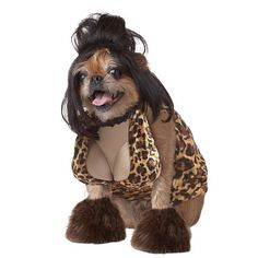 Dog looks like snookie. 20 Hilarious Dog #Halloween #Costumes