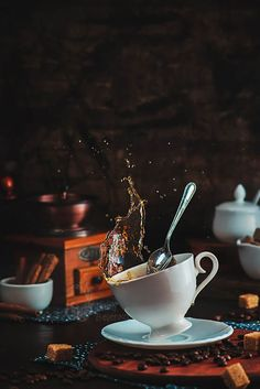 Amazing Still Life Photographs In Action By Dina Belenko