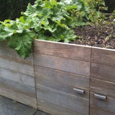 Raised beds with storage underneath! To make of reclaimed pallets?
