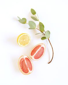 Nakko (brand) Mood Board Orange Things z orange systems Fruit Photography, Flat Lay Photography, Food Backgrounds, Food Illustrations, Aesthetic Pictures, Grapefruit, Food Styling, Food Art, Food Inspiration