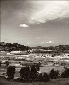 Herbert List  GREECE. Peloponnese. Olympia. 1937.