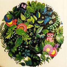 enchanted forest - secret garden - coloring book - johanna basford - floresta encantada - jardim secreto