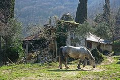 Hermitage at Skete Iviron by thiv56  Macedonia