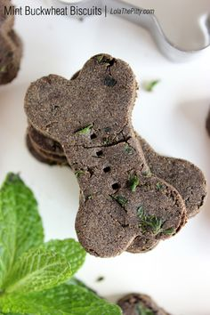 These treats are awesome! They help with bad dog breath and are super easy to make. {Homemade Mint Buckwheat Dog Biscuit Recipe | LolaThePitty.com}