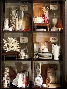 """Spraypaint some ugly fake coral from the Wal-Mart pet department (the kind of fish tanks) to make this Pottery Barn knockoff decor."""" Sure will try this 'cause I can't afford the Pottery Barn stuff."""