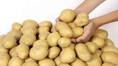Kartoffeln - Gesunde Sattmacher