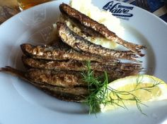 Traditional sailor restaurant, Salve. When you hunger for authentic Finnish food their mashed potatoes with fried herrings - or meatballs with creamy sauce - is a perfect choice.