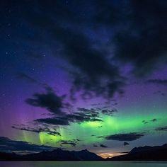 Northern nights = northern lights 2016 Jasper Dark Sky Festival link in bio. Photo by @jeremyycd #MyJasper