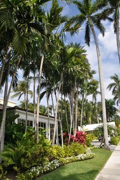 Palm Beach - outside The Brazilian Court Hotel