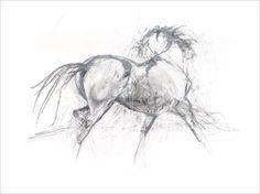 Image I (Black & White) Contemporary equine study fine art giclee print