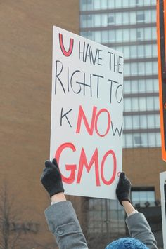 GMOs - Engineered Poison Lurking in Your Everday Food