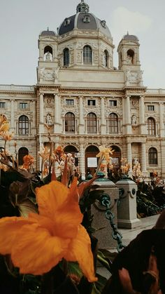 Austria, Vienna Waits For You, Danube River, Imperial Palace, Europe, Eurotrip, Future Travel, Palaces, Trips