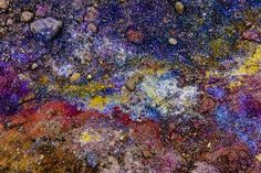 A World of Colors on a Patch of Land Photo by Kyle Adler — National Geographic Your Shot World Of Color, National Geographic Photos, Your Shot, Amazing Photography, Shots, Colors, Painting, Image, Painting Art