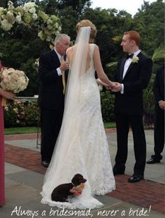 Puppy wanted to be in the wedding party ❤