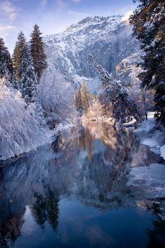 Reflections in Yosemite National Park, California from Molly Wassenaar on Flickr
