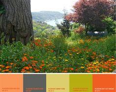 Electric acid colours might seem artificial, but they can derive from Nature. Have a look! Colour Schemes, Color Combos, Color Palettes, Creative Colour, Color Inspiration, Paint Colors, Colours, Art Work, Floral