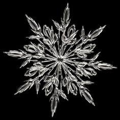 画像 : 【こんなに綺麗だった!!】肉眼では見えにくい雪の結晶!【画像】 - NAVER まとめ