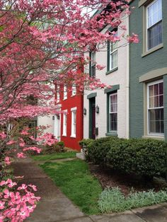 95 best downtown destinations in southern indiana images madison rh pinterest com