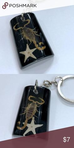 New Real Scorpion Resin Birthday Keychain Gift-e57 Item is brand new  Makes a great gift for any occasion Accessories Key & Card Holders