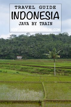 A complete backpacking guide on the best way to travel around Java by train. Tips on where to go, how to get tickets and what the train in Indonesia is like. In Plan, How To Plan, Ways To Travel, Get Tickets, Southeast Asia, Where To Go, Java, Travel Around, Travel Guides