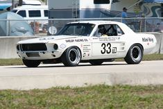 1967 Ford Shelby Mustang #33 Trans Am Series race car