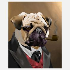 Every board on Pinterest needs a well dressed pug. Every board.