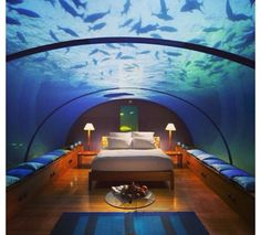 fish tank bedroom 1000 images about fish tanks on fish tanks 11544