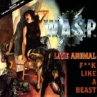 W.A.S.P Facts & Rumours