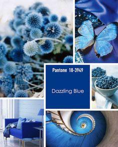 Pantone Spring 2014 colors, Dazzling Blue. Monday Moodboard – Pantone Dazzling Blue