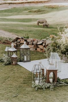 Wild wedding with a unique view at the San Diego Zoo Safari Park - Photo by: Shelly Anderson Photography Glamping Weddings, Park Weddings, Destination Weddings, Romantic Weddings, Small Weddings, Beach Weddings, Safari Wedding, Boho Wedding, Wedding Church