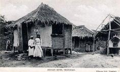 19th c Indian huts in Trinidad.