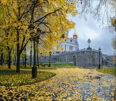 Russia. Moscow. Autumn in the Patriarchal park. by Yuri Degtyarev on 500px