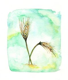 Hey, I found this really awesome Etsy listing at https://www.etsy.com/listing/99804059/field-of-wheat-blue-green-yellow-gold