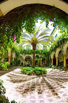Courtyard at Palacio de Viana, #Córdoba, Spain