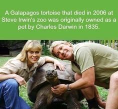 A Galapagos tortoise that died in 2006 at Steve Irwin's zoo was originally owned as a pet by Charles Darwin in Charles Darwin, Wtf Fun Facts, True Facts, Funny Facts, Random Facts, Crazy Facts, Strange Facts, Random Stuff, Odd Facts