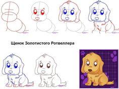шпиц этапы рисования: 3 тыс изображений найдено в Яндекс.Картинках