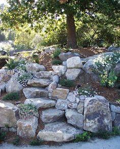 Architectural Landscape Design                                                                                                                                                                                 More