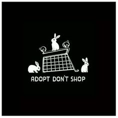 #AdoptDontShop