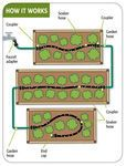 Buy a Cucumber Trellis Medium from RaisedBeds.com. Trellising gives better quality fruit, easier harvesting and minimizes diseases for your cucumbers