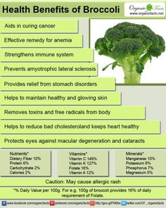 'B' for Broccoli and 'B' for bliss for health. This green vegetable with some purple tinges sometimes, a close relative of Cabbage and Cauliflower, belongs to the Italica Cultivar group of Brassicaceae family and is a store house of those nutrients which can keep you evergreen.