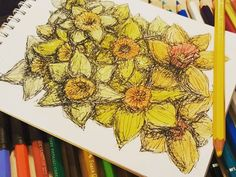 Sold this #original #daffodils #illustration yesterday.  PM @candymedusaart if you'd like to #commission your own #spring #flowers #picture :)  #daffodil #daffs #bulbs #narcissus #springflowers #pen #ink #drawing #sketch #pencil #colouredpencil #watercolour #mixedmedia