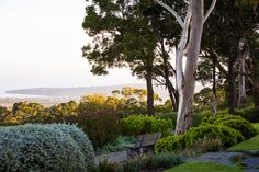 """[Robert Boyle](http://www.boylelandscape.com.au /?utm_campaign=supplier/