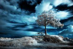 """""""blue ir"""" - Dave Deluria  http://www.flickr.com/photos/davedeluria/"""