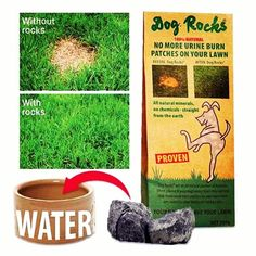 Dog's urine burning your lawn? I've not used these personally, but I've heard great things.  What are Dog Rocks?  Dog Rocks® are a 100% Natural Australian product that will save your lawn from those nasty burn patches that your Dog's urine can cause. Dog Rocks® filter out impurities from water such as Tin, ammonia and nitrates. These impurities are usually passed out through urine, and when grass comes in contact with these elements it results in urine burn on grass, resulting in a dead…