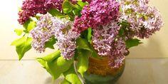 Lilac Bouquet Vase